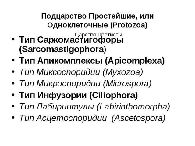 Тип Саркомастигофоры (Sarcomastigophora) Тип Саркомастигофоры (Sarcomastigophora) Тип Апикомплексы (Apicomplexa) Тип Миксоспоридии (Myxozoa) Тип Микроспоридии (Microspora) Тип Инфузории (Ciliophora) Тип Лабиринтулы (Labirinthomorpha) Тип Асцетоспори…