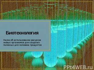Биотехнология Наука об использовании ресурсов живых организмов для создания поле