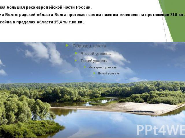 Волга— самая большая река европейской части России. По территории Волгоградской области Волга протекает своим нижним течением на протяжении318км. Площадь бассейна в пределах области15,4 тыс.кв.км.