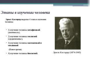 Этапы в изучении человека Эрнст Кассирер выделял 4 этапа в изучении человека: 1)