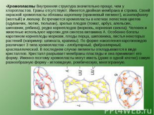 Хромопласты Внутренняя структура значительно проще, чем у хлоропластов. Граны от
