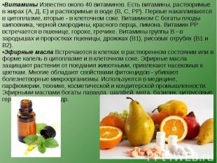 Витамины Известно около 40 витаминов. Есть витамины, растворимые в жирах (А, Д,