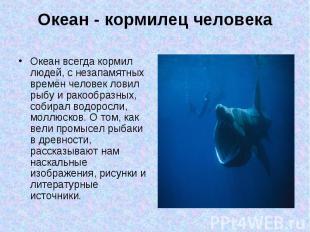 Океан всегда кормил людей, с незапамятных времён человек ловил рыбу и ракообразн