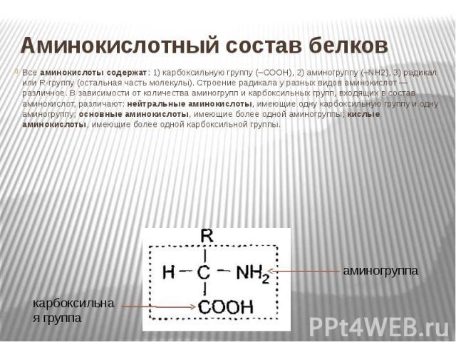 Аминокислотный состав белков Все аминокислоты содержат: 1) карбоксильную группу (–СООН), 2) аминогруппу (–NH2), 3) радикал или R-группу (остальная часть молекулы). Строение радикала у разных видов аминокислот — различное. В зависимости от количества…