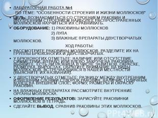 """ЛАБОРАТОРНАЯ РАБОТА №4 ЛАБОРАТОРНАЯ РАБОТА №4 ПО ТЕМЕ: """"ОСОБЕННОСТИ СТРОЕНИ"""