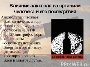 Алкоголь уничтожает клетки печени, а ведь в ней происходит образование АТФ (аден