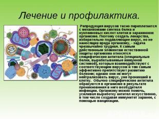 Репродукция вирусов тесно переплетается с механизмами синтеза белка и нуклеиновы