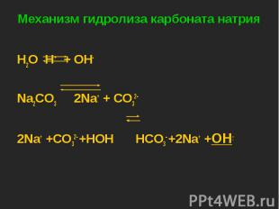 H2O H+ + OH- H2O H+ + OH- Na2CO3 2Na+ + CO32- 2Na+ +CO32- +HOH HCO3- +2Na+ +OH-