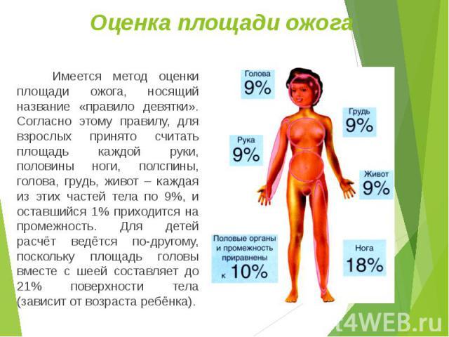 Имеется метод оценки площади ожога, носящий название «правило девятки». Согласно этому правилу, для взрослых принято считать площадь каждой руки, половины ноги, полспины, голова, грудь, живот – каждая из этих частей тела по 9%, и оставшийся 1% прихо…