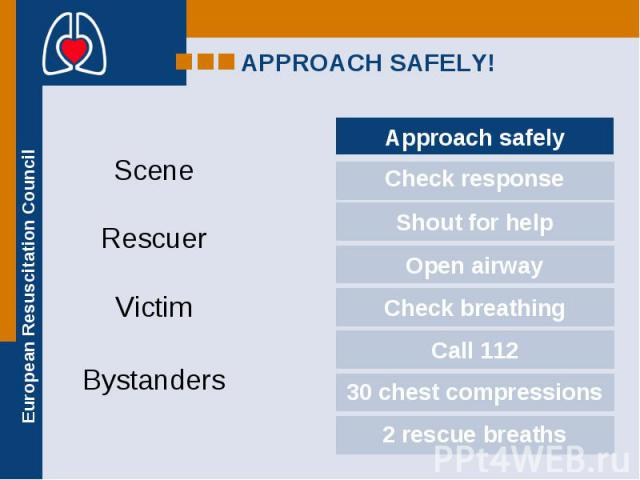 Scene Rescuer Victim Bystanders
