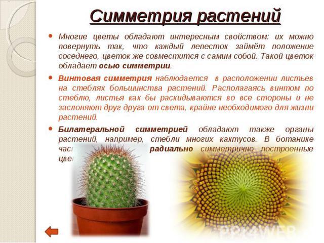 Многие цветы обладают интересным свойством: их можно повернуть так, что каждый лепесток займёт положение соседнего, цветок же совместится с самим собой. Такой цветок обладает осью симметрии. Многие цветы обладают интересным свойством: их можно повер…