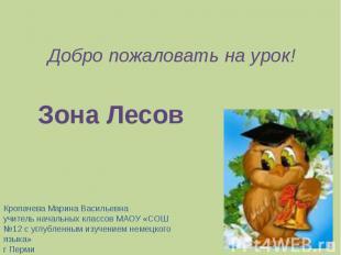 Добро пожаловать на урок!