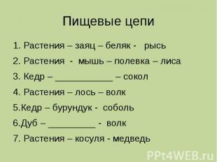 Пищевые цепи 1. Растения – заяц – беляк - рысь 2. Растения - мышь – полевка – ли
