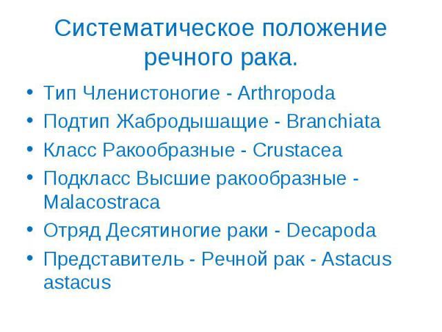 Тип Членистоногие - Arthropoda Тип Членистоногие - Arthropoda Подтип Жабродышащие - Branchiata Класс Ракообразные - Crustacea Подкласс Высшие ракообразные - Malacostraca Отряд Десятиногие раки - Decapoda Представитель - Речной рак - Astacus astacus