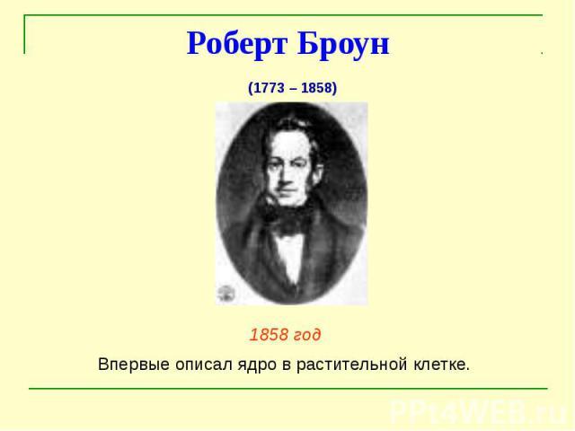 Роберт Броун 1858 год Впервые описал ядро в растительной клетке.