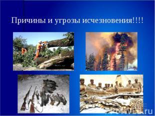 Причины и угрозы исчезновения!!!!