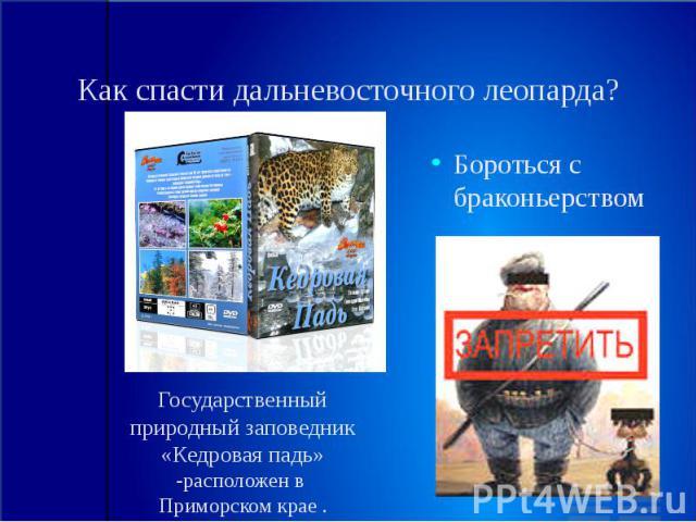 Как спасти дальневосточного леопарда? Государственный природный заповедник «Кедровая падь» -расположен в Приморском крае .