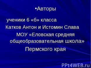 Авторы ученики 6 «б» класса Катков Антон и Истомин Слава МОУ «Еловская средняя о