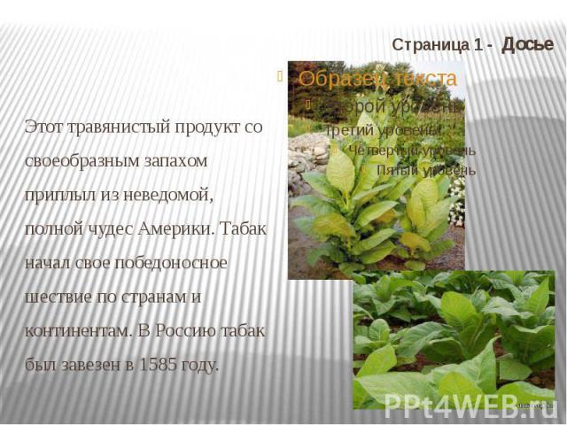 Страница 1 - Досье Этот травянистый продукт со своеобразным запахом приплыл из неведомой, полной чудес Америки. Табак начал свое победоносное шествие по странам и континентам. В Россию табак был завезен в 1585 году.