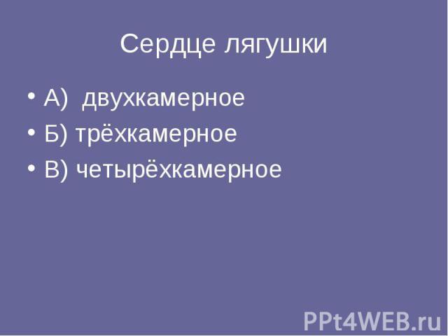 Сердце лягушки А) двухкамерное Б) трёхкамерное В) четырёхкамерное
