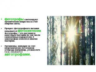 фототрофы синтезируют органические вещества за счёт энергии света; фототрофы син
