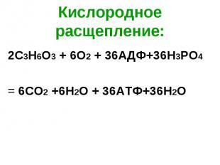 2С3Н6О3 + 6О2 + 36АДФ+36Н3РО4 2С3Н6О3 + 6О2 + 36АДФ+36Н3РО4 = 6СО2 +6Н2О + 36АТФ
