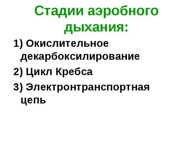 1) Окислительное декарбоксилирование 1) Окислительное декарбоксилирование 2) Цикл Кребса 3) Электронтранспортная цепь