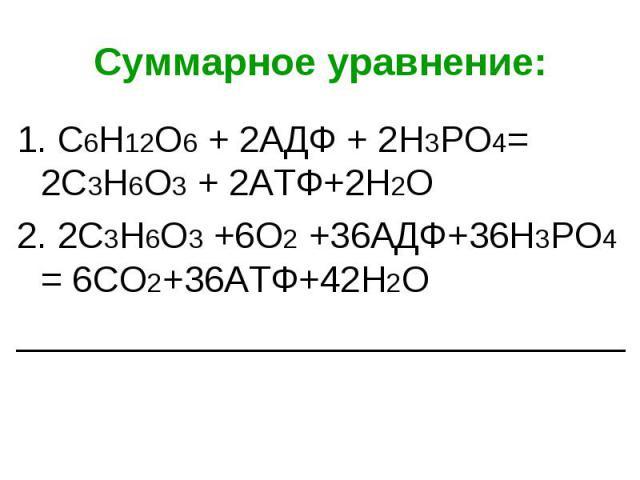 1. С6Н12О6 + 2АДФ + 2Н3РО4= 2С3Н6О3 + 2АТФ+2Н2О 1. С6Н12О6 + 2АДФ + 2Н3РО4= 2С3Н6О3 + 2АТФ+2Н2О 2. 2С3Н6О3 +6О2 +36АДФ+36Н3РО4 = 6СО2+36АТФ+42Н2О ______________________________