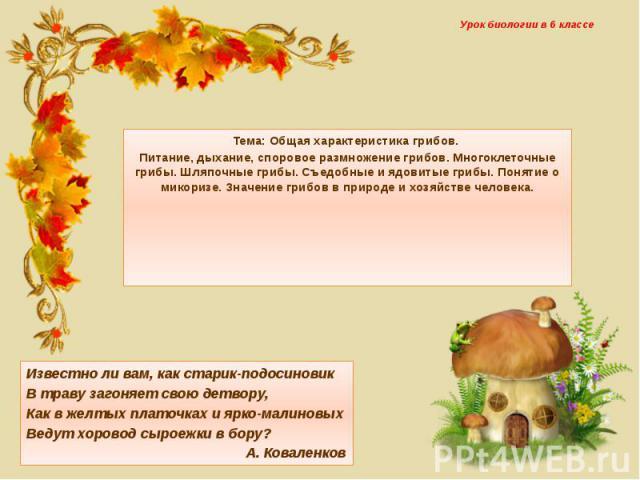 Урок биологии в 6 классе Тема: Общая характеристика грибов. Питание, дыхание, споровое размножение грибов. Многоклеточные грибы. Шляпочные грибы. Съедобные и ядовитые грибы. Понятие о микоризе. Значение грибов в природе и хозяйстве человека.