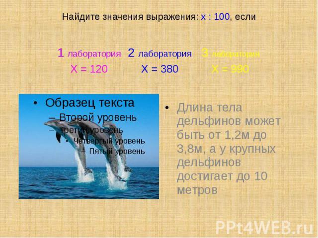Найдите значения выражения: х : 100, если Длина тела дельфинов может быть от 1,2м до 3,8м, а у крупных дельфинов достигает до 10 метров