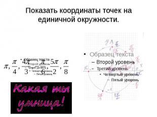 Показать координаты точек на единичной окружности.