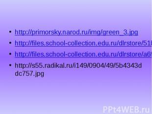 http://primorsky.narod.ru/img/green_3.jpg http://files.school-collection.edu.ru/