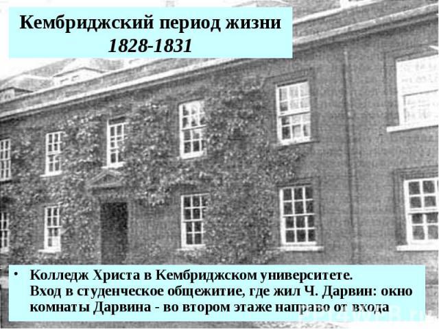 Кембриджский период жизни 1828-1831 Колледж Христа в Кембриджском университете. Вход в студенческое общежитие, где жил Ч. Дарвин: окно комнаты Дарвина - во втором этаже направо от входа