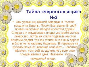 Тайна «черного» ящика №3 Они уроженцы Южной Америки, в Россию попали из Европы.