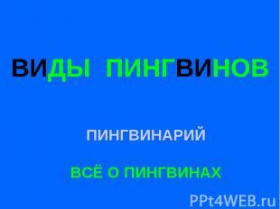 ВИДЫ ПИНГВИНОВ