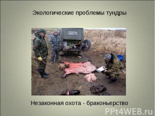 Незаконная охота - браконьерство Незаконная охота - браконьерство