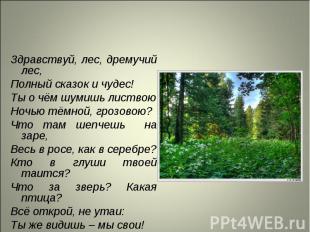 Здравствуй, лес, дремучий лес, Здравствуй, лес, дремучий лес, Полный сказок и чу