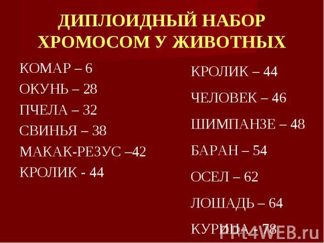 КОМАР – 6 КОМАР – 6 ОКУНЬ – 28 ПЧЕЛА – 32 СВИНЬЯ – 38 МАКАК-РЕЗУС –42 КРОЛИК - 44