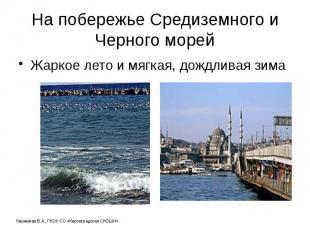 На побережье Средиземного и Черного морей Жаркое лето и мягкая, дождливая зима