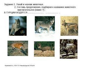 Задание:1. Узнай и назови животных. 2. Составь предложение, подбирая к названию
