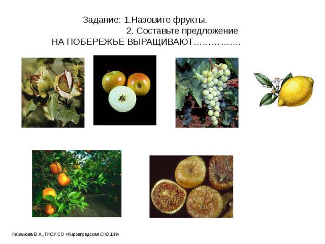 Задание: 1.Назовите фрукты. 2. Составьте предложение НА ПОБЕРЕЖЬЕ ВЫРАЩИВАЮТ…………….