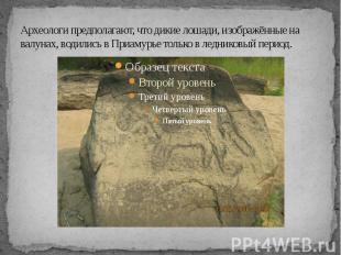 Археологи предполагают, что дикие лошади, изображённые на валунах, водились в Пр