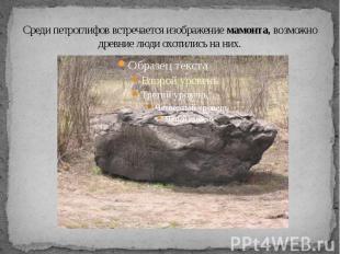 Среди петроглифов встречается изображение мамонта, возможно древние люди охотили