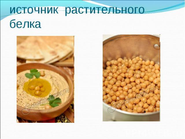 ХУМУС – источник растительного белка