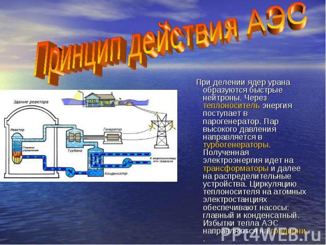 При делении ядер урана образуются быстрые нейтроны. Через теплоноситель энергия поступает в парогенератор. Пар высокого давления направляется в турбогенераторы. Полученная электроэнергия идет на трансформаторы и далее на распределительные устройства…