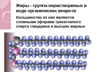 Жиры - группа нерастворимых в воде органических веществ Жиры - группа нераствори