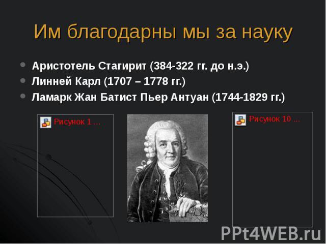 Аристотель Стагирит (384-322 гг. до н.э.) Аристотель Стагирит (384-322 гг. до н.э.) Линней Карл (1707 – 1778 гг.) Ламарк Жан Батист Пьер Антуан (1744-1829 гг.)
