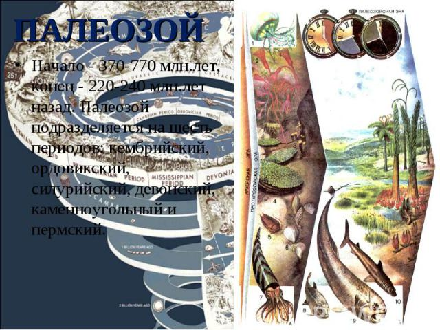 Начало - 370-770 млн.лет, конец - 220-240 млн.лет назад. Палеозой подразделяется на шесть периодов: кембрийский, ордовикский, силурийский, девонский, каменноугольный и пермский. Начало - 370-770 млн.лет, конец - 220-240 млн.лет назад. Палеозой подра…