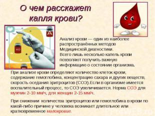 Анализ крови— один изнаиболее Анализ крови— один изнаибо