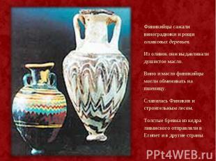 Финикийцы сажали виноградники и рощи оливковых деревьев. Финикийцы сажали виногр